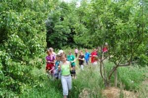 girls among trees-e
